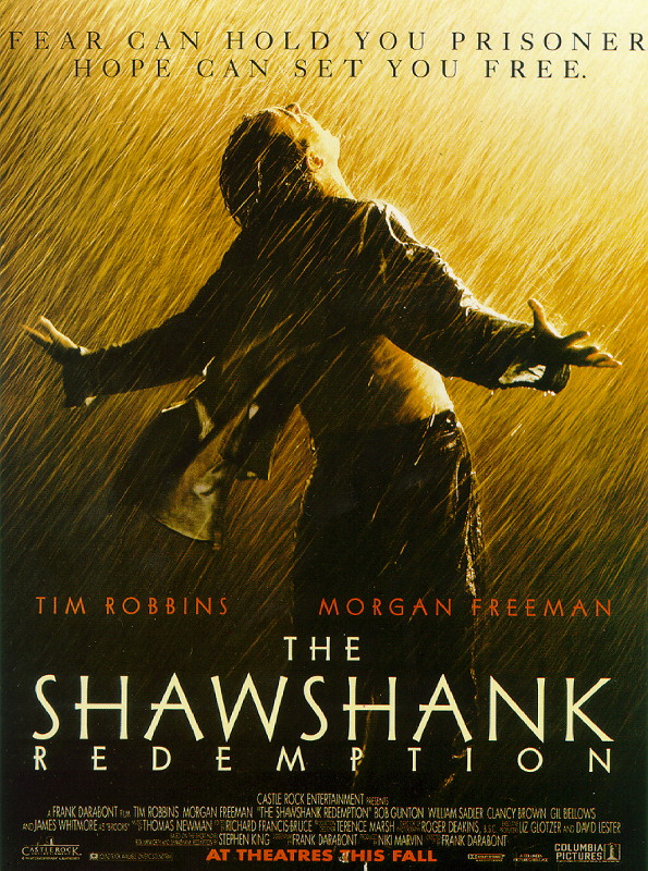 the values of the shawshank redemption The shawshank redemption (1994) is one of cinema's great stories that depict  how people discover their influence when they need it the most.