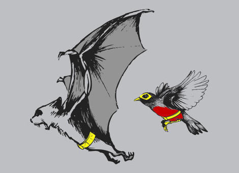 Bat and Robin t-shirt