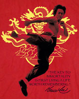 kick bruce lee t-shirts dragon