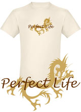 Hangover 2 Perfect Life t-shirt
