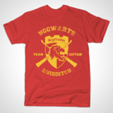 Harry Potter Gryffindor Quidditch