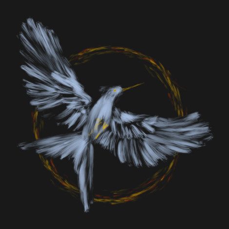 District 13 Mockingjay t-shirt